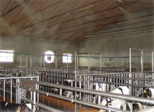 Luftabkühlung in Tierzucht durch Wasserzerstaubung: Kühlung, Desinfektion, Staubbindung
