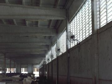 Hitzestress bei Kühen: Lösungen zur Steigerung der Produktivität