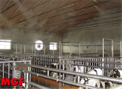 Misting in farms: cooling, disinfection and odour removal for cows…