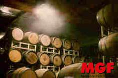 Humidification in cellars and barrel room: the right humidity for wine