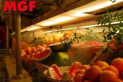 Humidification des fruits, de la viande, du poisson. Stop déshydration