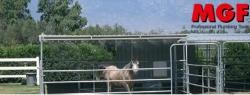 Refroidissement des chevaux: la solution contre stress et tendinites
