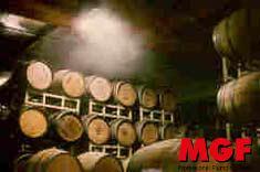 Humidification: l'humidité correcte pour le vin et les barils avec MGF