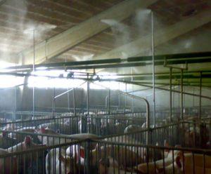 Impianti di nebulizzazione per la disinfezione sale parto e lettiere