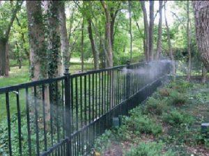 Nebulizzazione nei giardini: landscaping, cooling e disinfestazione