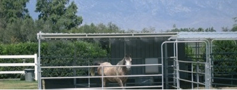 Cooling dei cavalli: una soluzione per stress e tendiniti